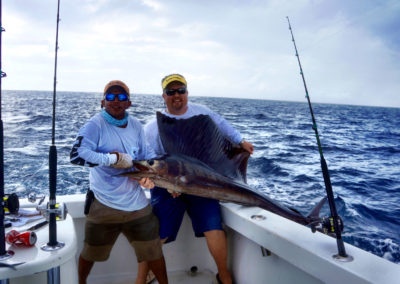 Dave Sailfish 2014